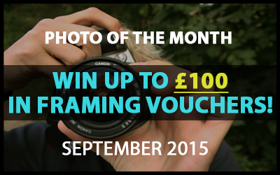 Best4Frames - Photo of the Month Competition: September 2015