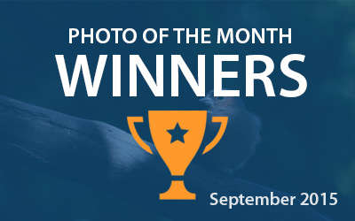 Best4Frames - Photo of the Month Competition: September 2015 WINNERS
