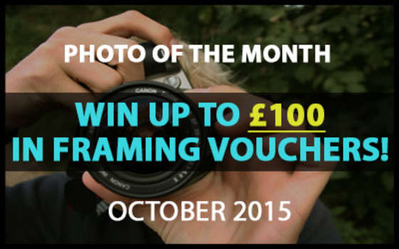Best4Frames - Photo of the Month Competition: October 2015