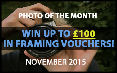 Best4Frames - Photo of the Month Competition: November 2015
