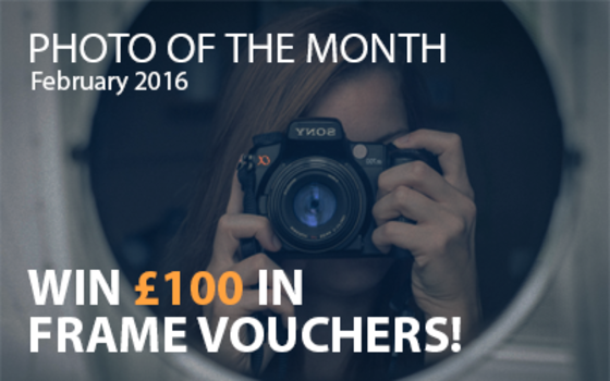 Best4Frames - Photo of the Month Competition: February 2016