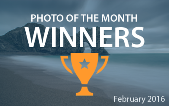 Best4Frames - Photo of the Month Competition: February 2016 WINNERS