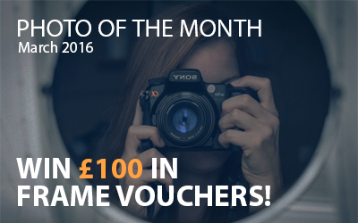 Best4Frames - Photo of the Month Competition: March 2016