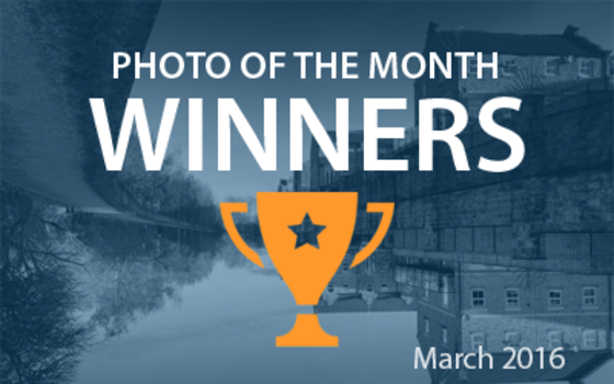 Best4Frames - Photo of the Month Competition: March 2016 WINNERS