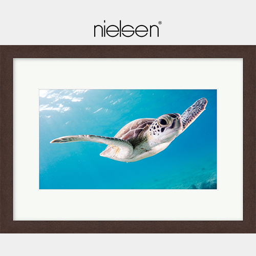 Nielsen print and frame