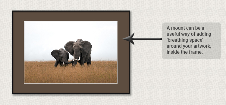Elephant picture inside sepia picture mount inside a frame