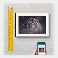 Nielsen print and frame